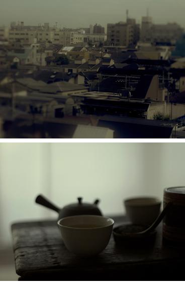 北川製茶、薩摩のお茶ユタカミドリ